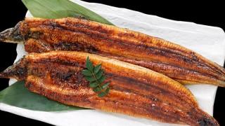 肉厚!ふわっ!トロッ!金沢特大うなぎ鰻蒲焼は、一般では手に入りにくい特大サイズ国産うなぎ鰻を通販で手軽に味わえる!
